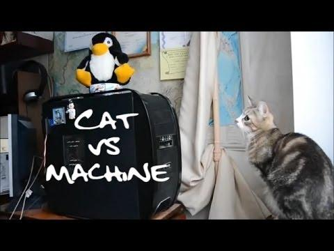 Cat Vs Machine - Funny Stuff!