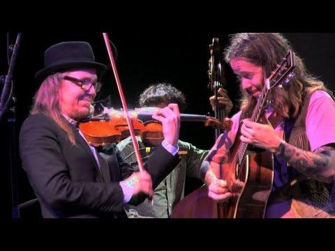 Steep Canyon Rangers, Billy Strings, Travellin McCourys, Knob Creek, Grey Fox 2019