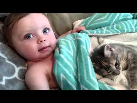 Baby And Kitten - Cutest Video Ever!