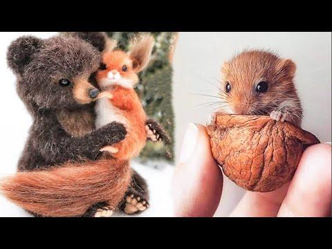 Cutest baby animals Videos Compilation Cute moment of the Animals - Cutest Animals #16