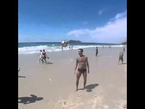 Beach Dog Loves The Ball