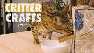 DIY Pet Food Dispenser | Critter Crafts