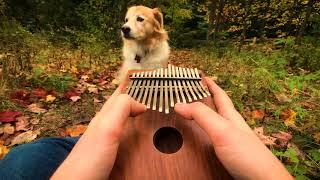 Can't Help Falling In Love on a Kalimba
